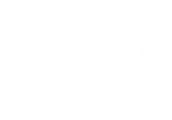 Velocity Flight Training Logo